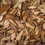ミミズ堆肥は、生ゴミ・落ち葉・コーヒー、どうやって与えるといい?