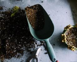 ミミズ 堆肥 使い方