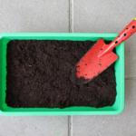 移し替えても大丈夫?庭や花壇でミミズを移す方法
