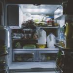 釣りであまったミミズは冷蔵庫で保存できる?飼育の場合、栄養価の高い餌は?