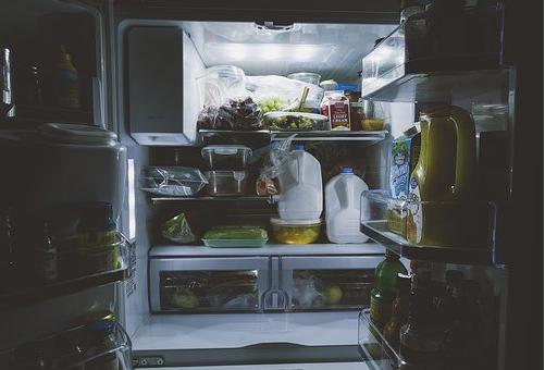 ミミズ 冷蔵庫 保存 栄養価 餌