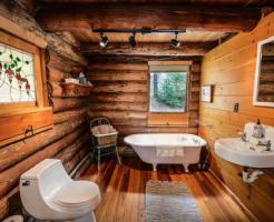 家 トイレ お風呂場 虫 ミミズ