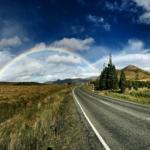 道路でよく干からびているミミズの生態と水中で生きられるかについて!