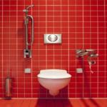 トイレの便器にいる黒いミミズは何?