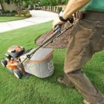 芝生のミミズ対策について