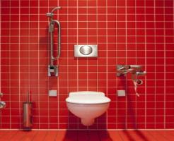 トイレ 便器 黒い ミミズ